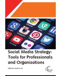 Social Media Strategy: Tools for Professionals and Organizations