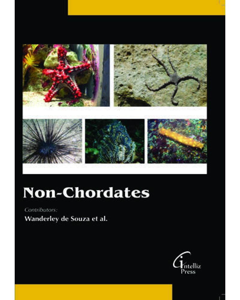 chordates and non chordates